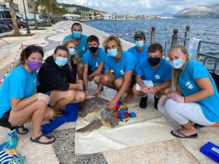 🇬🇷 While most of the world has been closed to international volunteers, the team in Greece have just rounded off a safe and successful season.   COVID-19 has prevented most international volunteers from travelling this year but here's proof that conservation efforts can still continue and flourish during a global pandemic.   #pmgy #pmgygreece #pmgywildlife